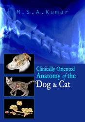 Clinically Oriented Anatomy Of The Dog And Cat
